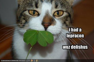 http://www.prairiedogmag.com/wp-content/uploads/2011/03/funny-pictures-your-cat-ate-a-leprechaun1.jpg