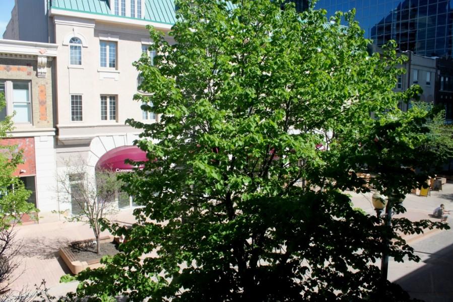 FR 2014 (may 30_1544)