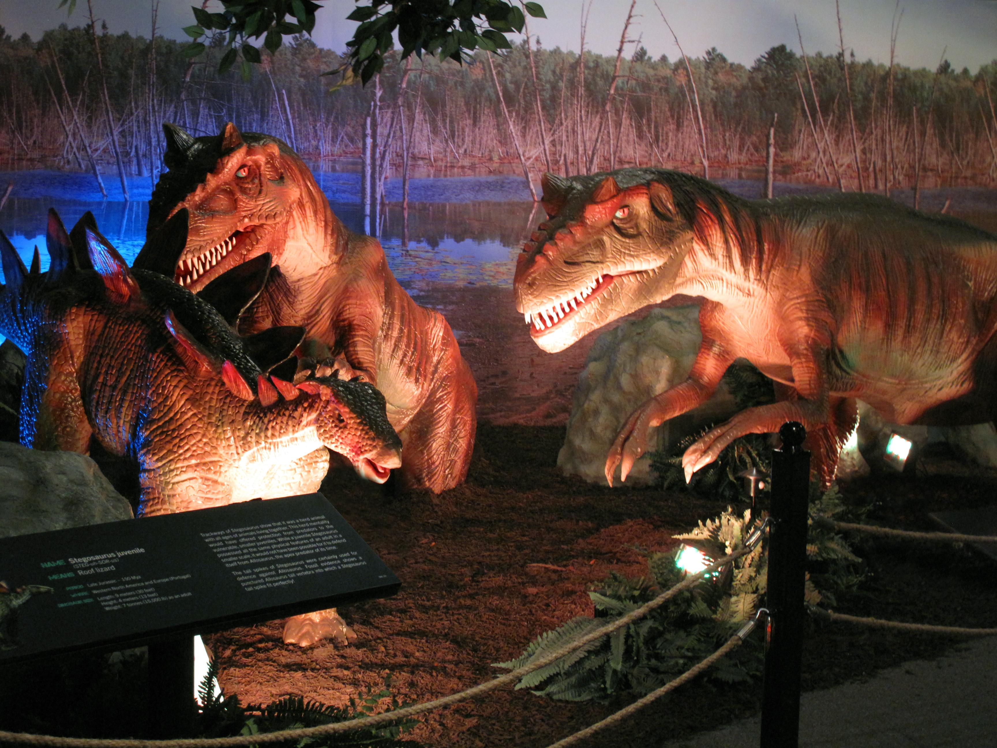 Predator Trap-Stegosaurus juvenile, Allosaurus juvenile trapped in mud